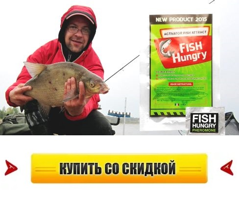 Приманки ловить рыбу карась