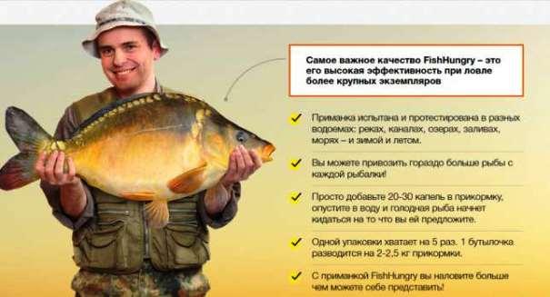 Fish Hungry купить в Прокопьевске